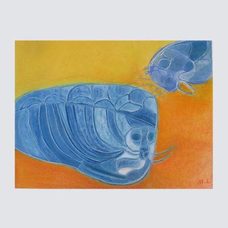 zeehonden-moeder-en-kind-martin-luhulima-01